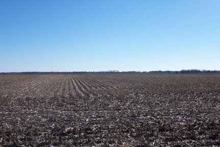 86.92 Acre Cass County Land Auction