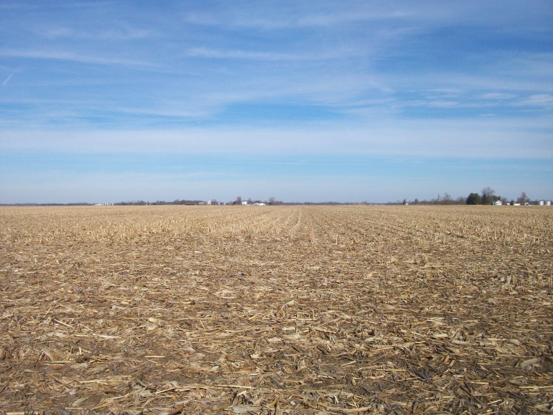 143.78 Class A Acres, Morgan County IL
