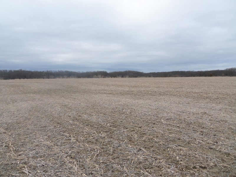 112.49 Ag/Rec Combo Acres, Brown County IL