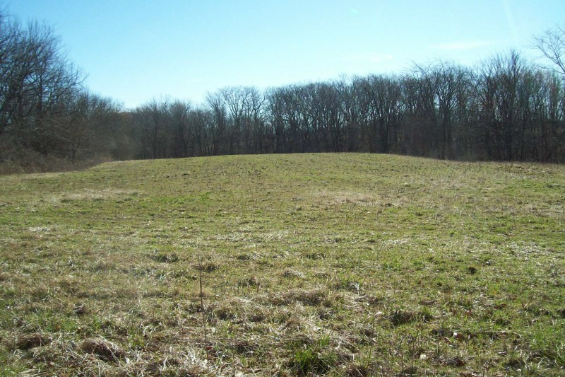 64 Acres, Morgan County IL