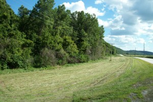 54.83 Acres Hunting Ground, Greene County IL