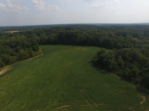 80 Acres with Opportunity, Morgan County IL