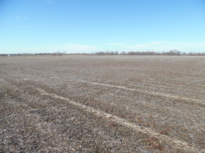 57.45 Class A Acres, 100% Tillable, Greene County IL