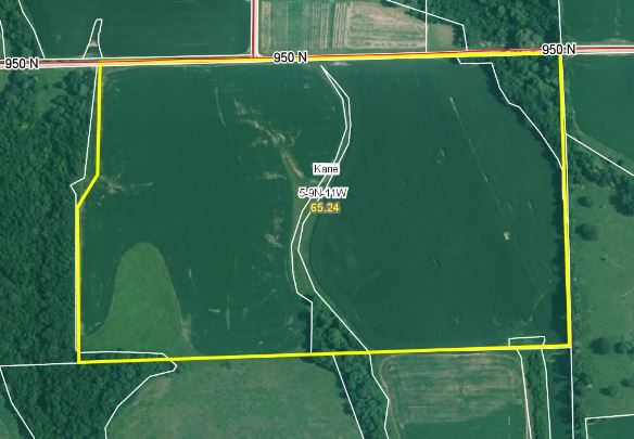 65.24 Acres, 94% Tillable, Greene County