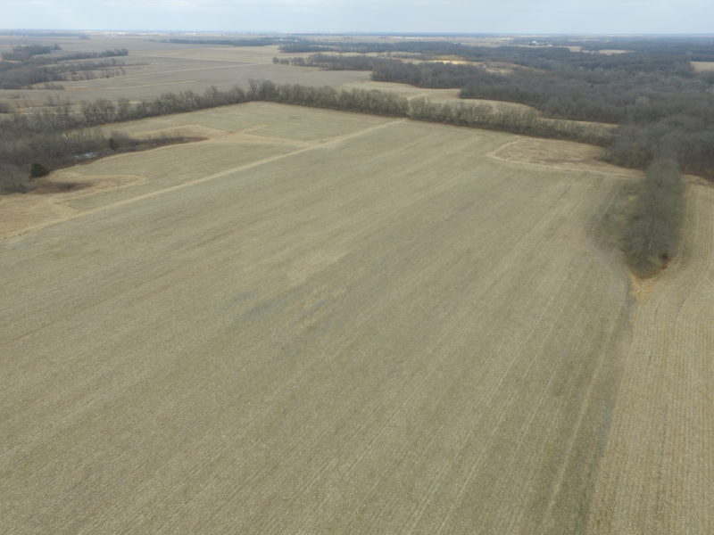 243.01± Acre Land Auction, Macoupin County